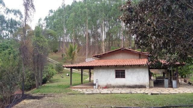 Linda Chacara 11 Alqueires - Proxima a Planalmira - Foto 2