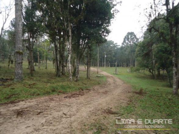 Chácara à venda em Bituvinha, Mafra cod:216CH - Foto 4