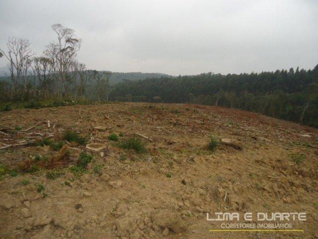 Chácara à venda em Bituvinha, Mafra cod:216CH - Foto 11