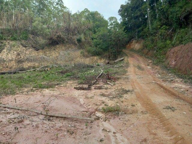 Vendo propriedade rural de 42 mil m2 em Alto Paraju - Domingos Martins ES  - Foto 8