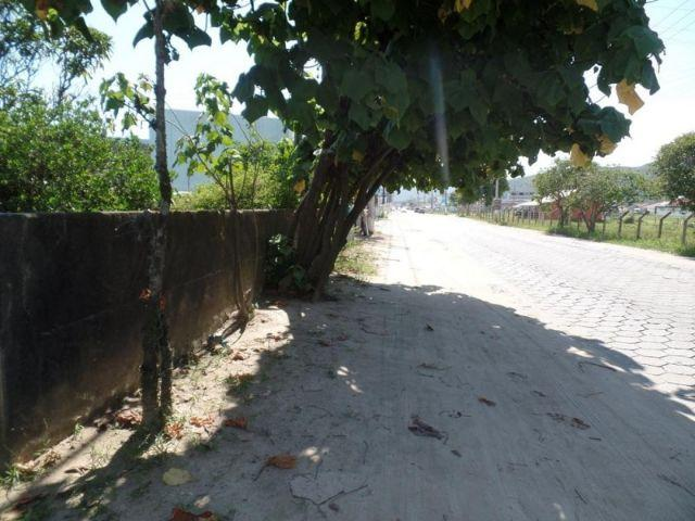 Terreno com casa em Perequê - Porto Belo - Foto 4