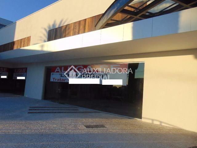Loja comercial para alugar em Vila ipiranga, Porto alegre cod:242289 - Foto 10