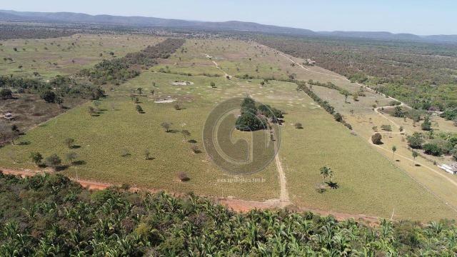 Fazenda para pecuária 185 ha santo antonio leverger - Foto 2