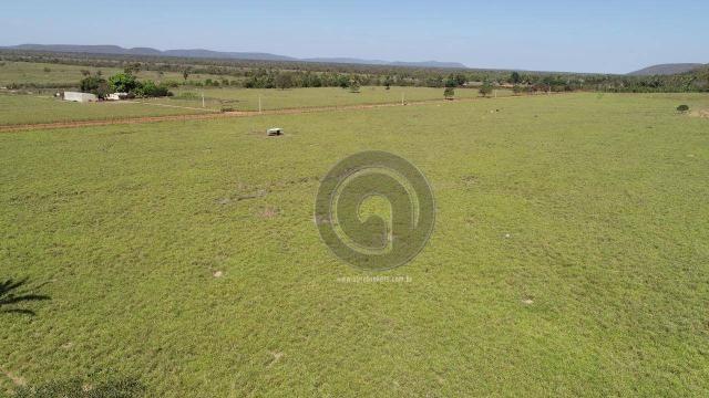 Fazenda para pecuária 185 ha santo antonio leverger - Foto 5