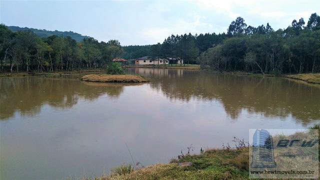 Fazenda 494.000m²(49,4 hectares) em Capão Alto SC - Foto 15
