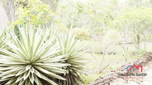 Chácara palmas/to - Foto 15