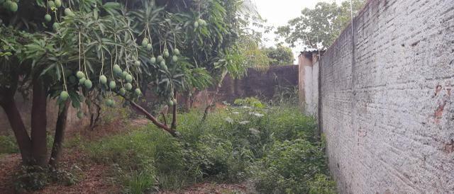 Casa para alugar , rua venezuela fone : * - Foto 5