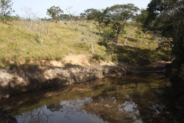 Terreno de 12 hectares em Fortuna de Minas - Foto 5