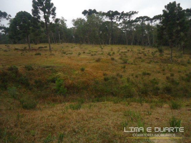 Chácara à venda em Bituvinha, Mafra cod:216CH - Foto 20