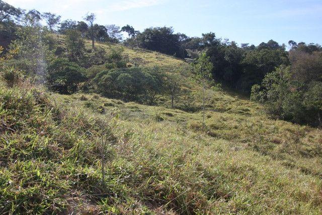 Terreno de 12 hectares em Fortuna de Minas - Foto 11