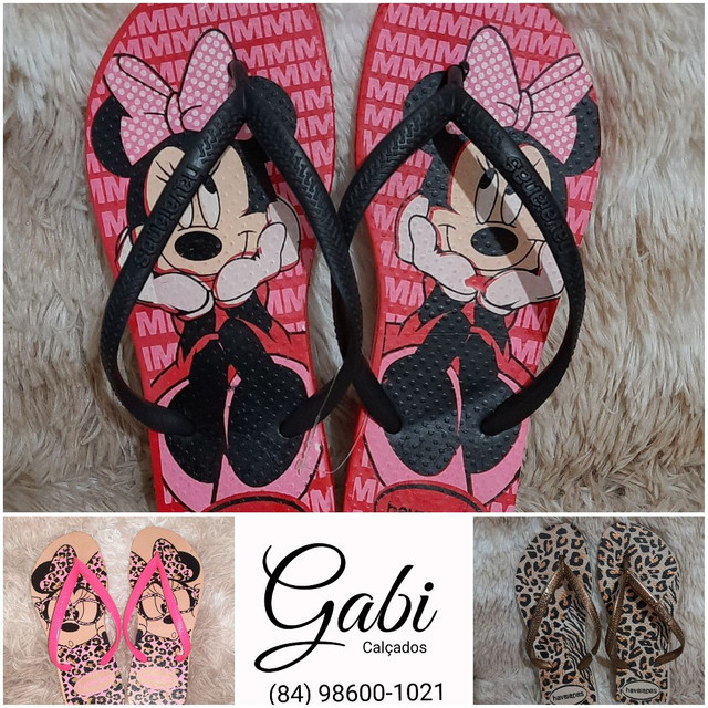 Chinelo havaianas<br>? N° 33 34 35 36 37 38 39 40