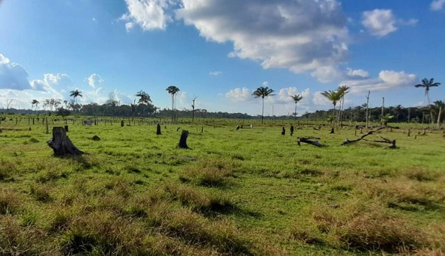 Excelente  Fazenda à 46Km  de  Porto Velho - Foto 8