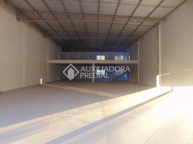 Loja comercial para alugar em Vila ipiranga, Porto alegre cod:242289 - Foto 12