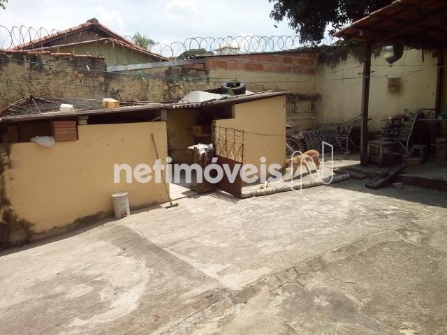 Casa à venda com 3 dormitórios em Dom cabral, Belo horizonte cod:776153 - Foto 10