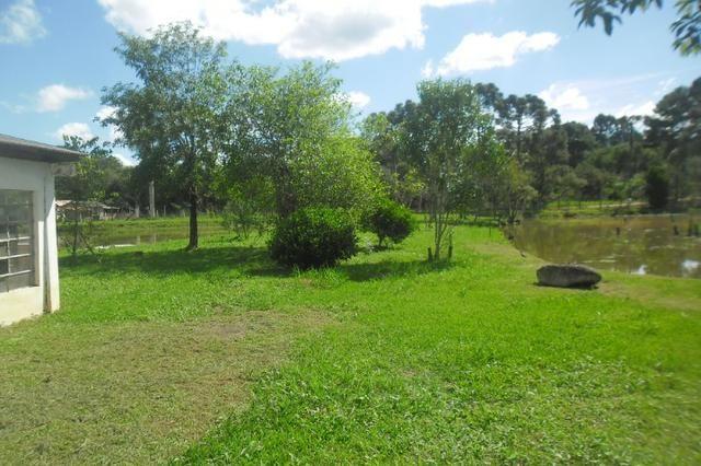Vende-se chácara em cai de baixo - Quitandinha (cód. A289)
