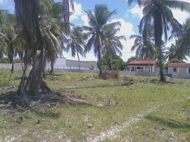 Vendo terreno (1000m²) no Parque Santa Ismênia - Macaíba. - Foto 4