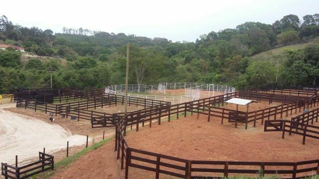 Pista de Ranch Sorting - Foto 4