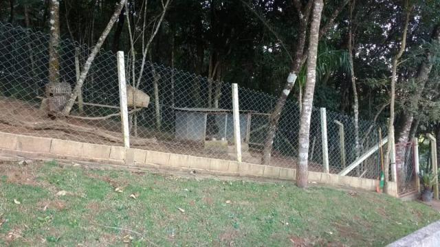 Casa à venda com 2 dormitórios em Fazenda velha, Pinhalzinho cod:CA0743 - Foto 20