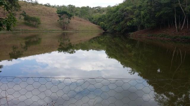 Linda Chacara 11 Alqueires - Proxima a Planalmira - Foto 5