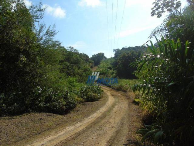 Fazenda antonina - Foto 19