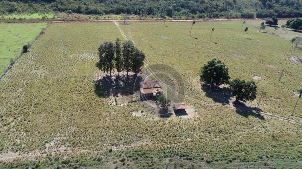 Fazenda para pecuária 650 ha na região santo antonio do leverger - Foto 2