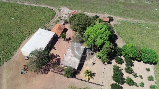 Fazenda para pecuária 185 ha santo antonio leverger - Foto 6