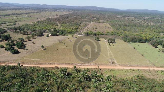 Fazenda para pecuária 650 ha na região santo antonio do leverger - Foto 5
