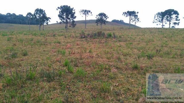 Fazenda 494.000m²(49,4 hectares) em Capão Alto SC - Foto 14