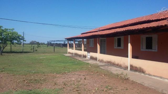 Fazenda 354,hectares - Foto 6