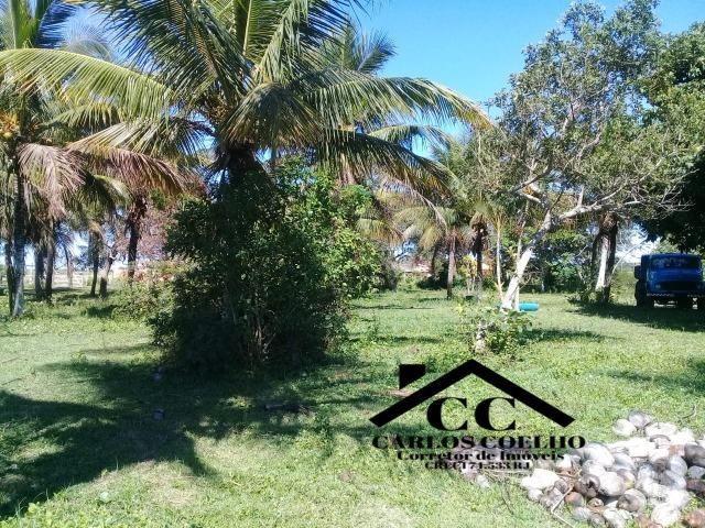 S-Loteamento Localizado a 500m da Rodovia Amaral Peixoto em Unamar - Tamoios - Cabo Frio! - Foto 8