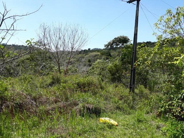 Sítio em Itacaré - Bahia - Foto 10