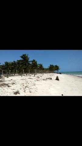Vendo terreno a beira mar em ponta de Pedras-pe- R$120mil - Foto 3