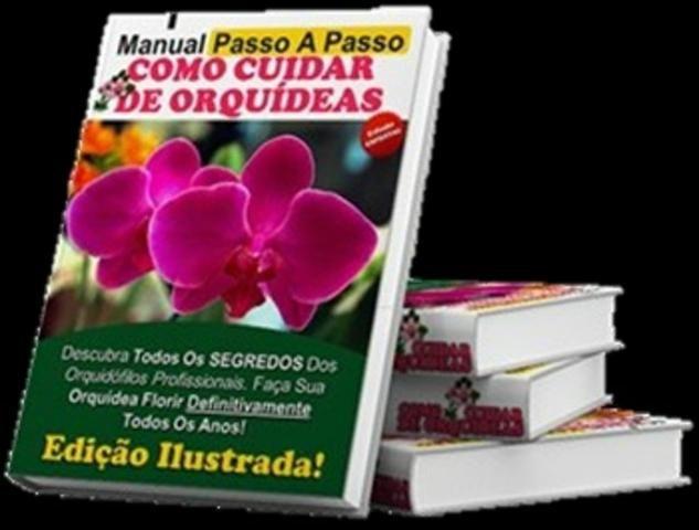 Curso Como Cuidar de Orquídeas + 2 Super bonus - Foto 3