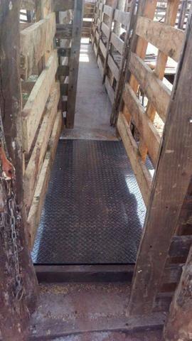 Balança de gado Barra de pesagem 3000 kg Bateria/Led vermelho Brete / Gaiola/ Tronco - Foto 6
