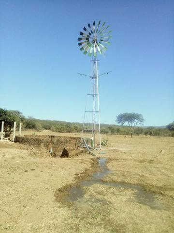 Catavento para bombeamento de água direto da fabrica