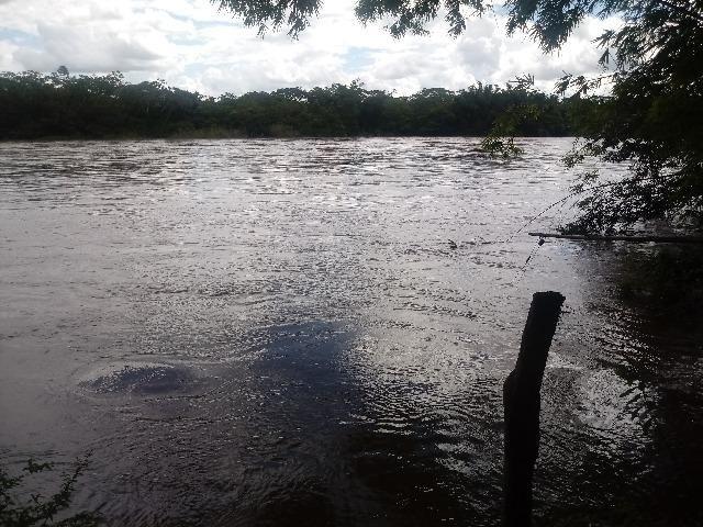 Vendo Chácara - Entre Guia e Acorizal - Rio Cuiabá - Foto 5