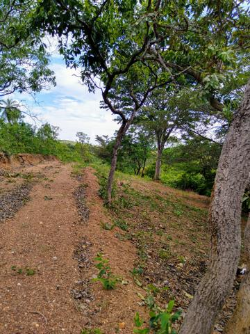 Sítio na região da Serra do Cipó - Foto 10