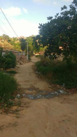Terreno no zumbi do Pacheco - Foto 3