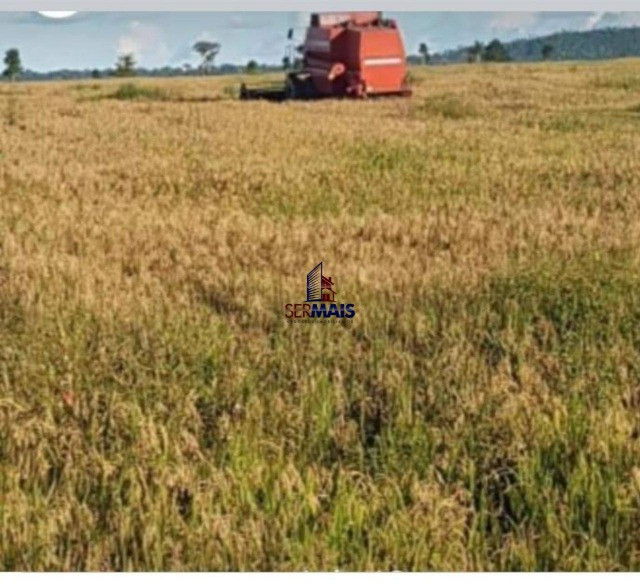 Fazenda à venda por R$ 25.000.000 - Zona Rural - Machadinho D'Oeste/RO - Foto 11