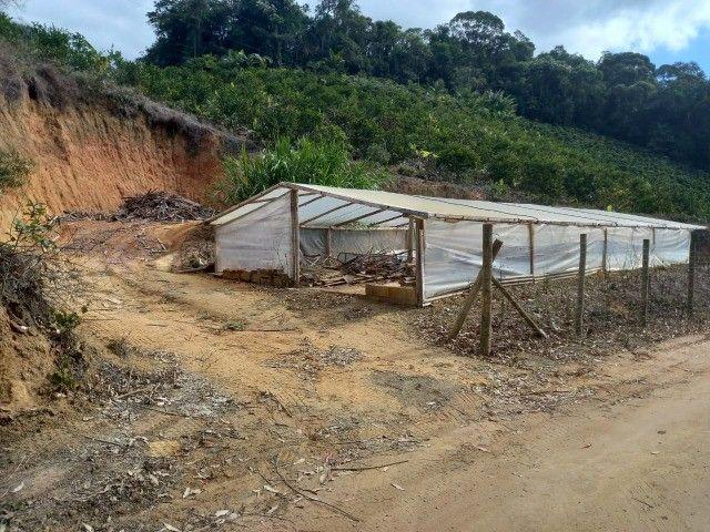 Vendo propriedade rural de 42 mil m2 em Alto Paraju - Domingos Martins ES  - Foto 4