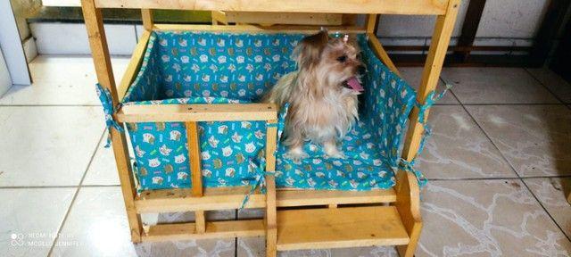 Casinha Cama Para Cães e Gatos - Foto 2