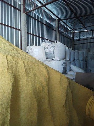 Ddg de milho alta proteína - Foto 3