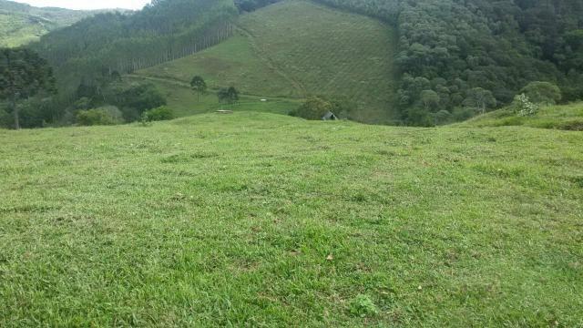 Fazenda pasto formado - Foto 7