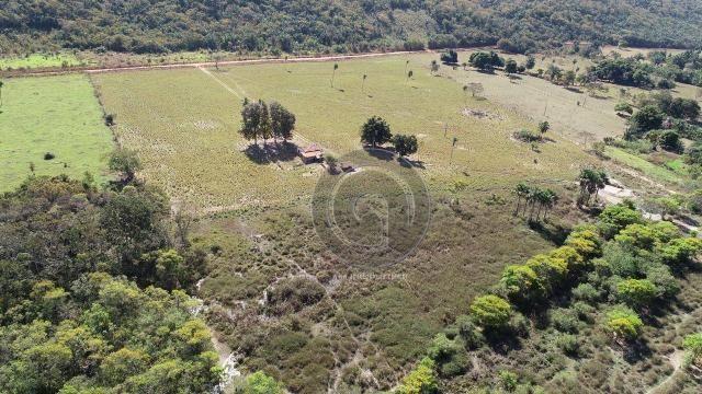 Fazenda para pecuária 650 ha na região santo antonio do leverger
