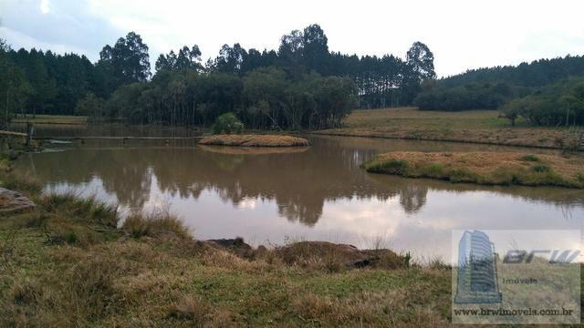 Fazenda 494.000m²(49,4 hectares) em Capão Alto SC - Foto 9
