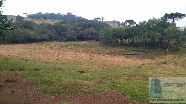 Fazenda 494.000m²(49,4 hectares) em Capão Alto SC - Foto 13