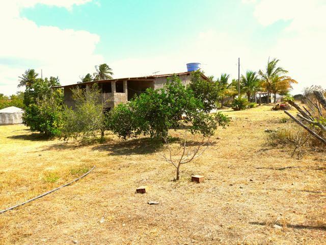 Sitio na Vila de Peladas em Caruaru - Foto 8