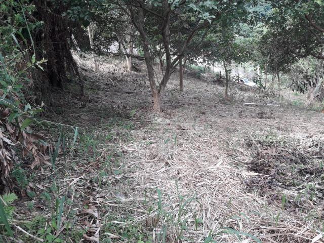 Jordão Corretores - Terreno de Esquina Boca do Mato - Foto 9