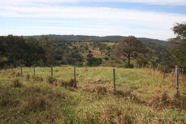 Terreno de 12 hectares em Fortuna de Minas - Foto 17