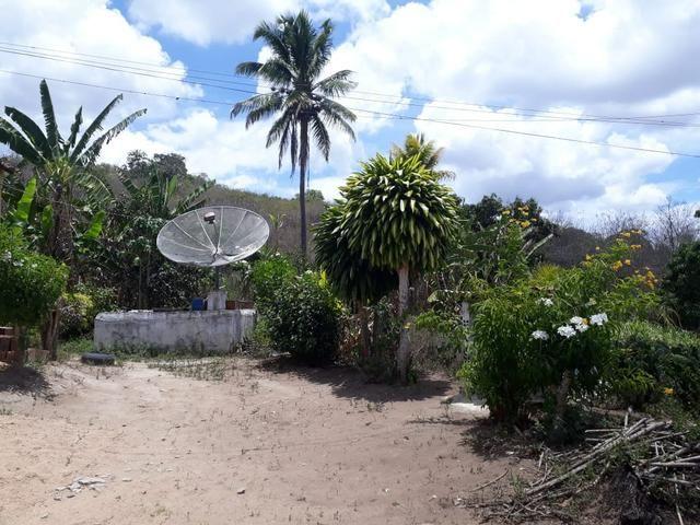 Vende-se um sítio em bom jardim - Foto 13